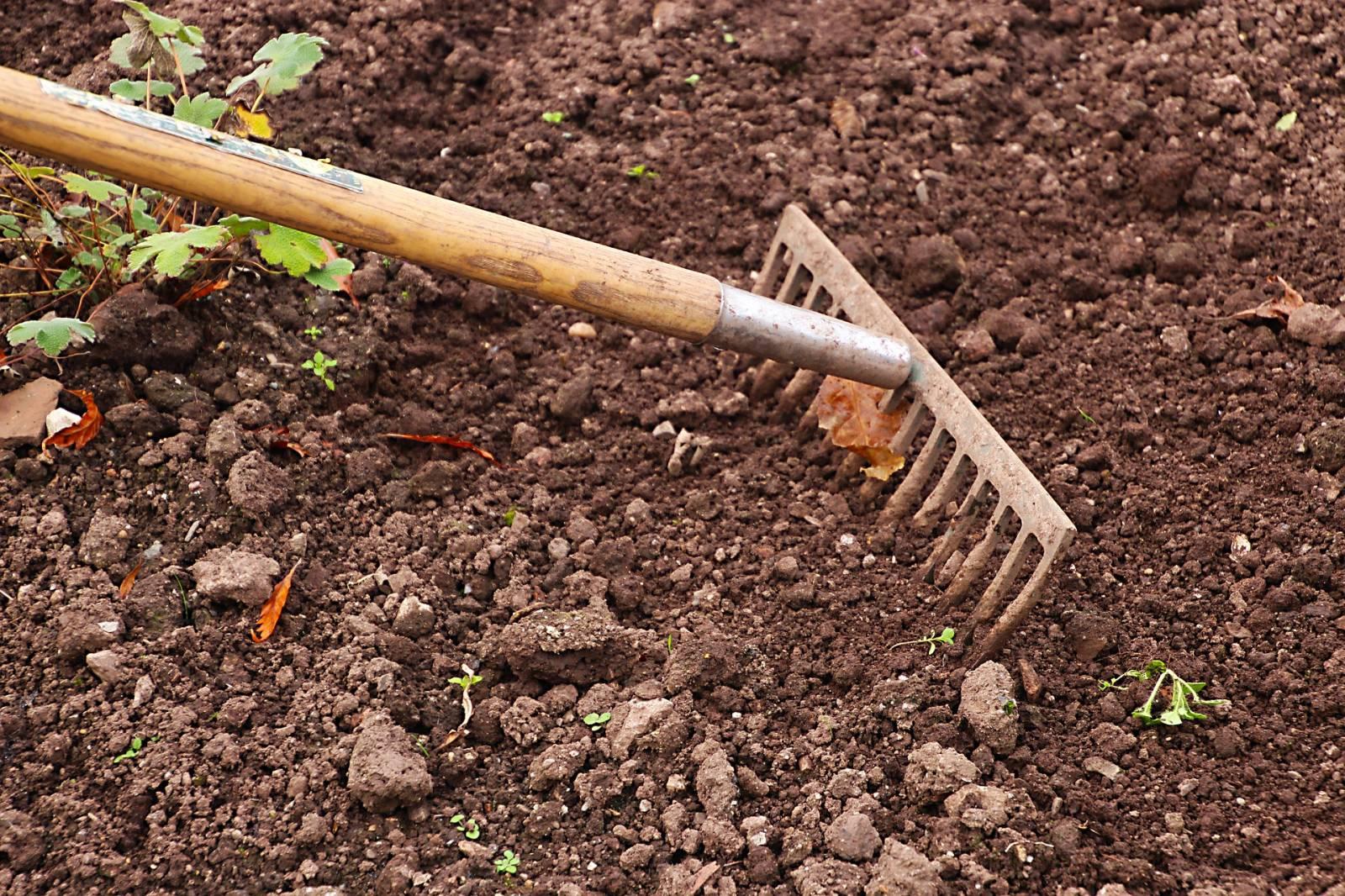 Jardinerie Animalerie Magasin De Jardinage Outils Vente D